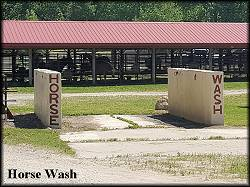 The Horse Wash